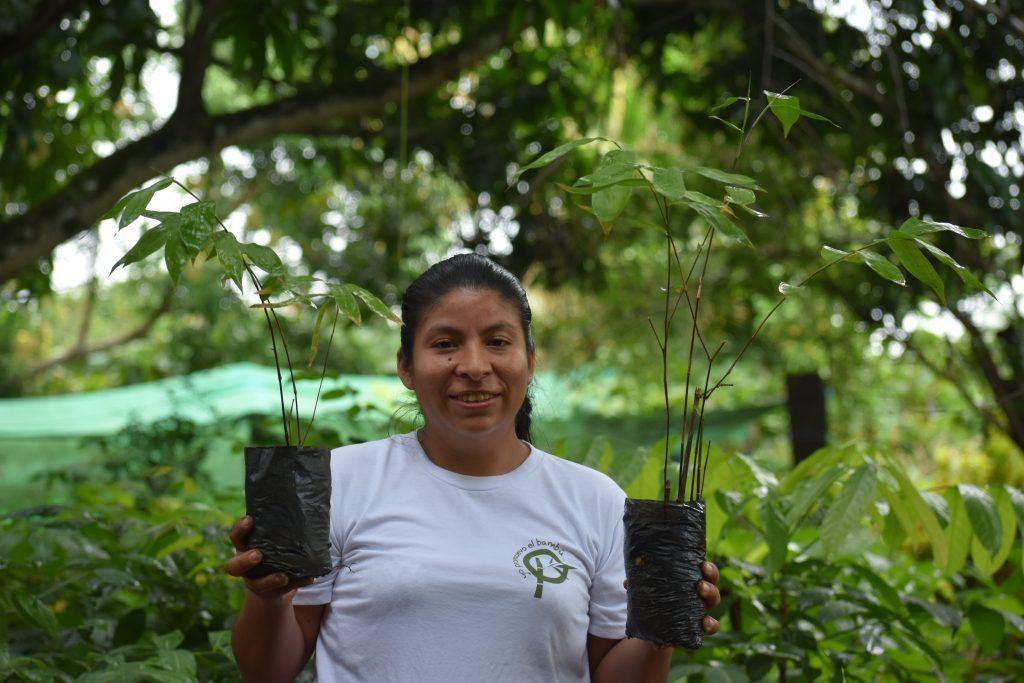 www.forestbambu.com518DSC1682-1024x683