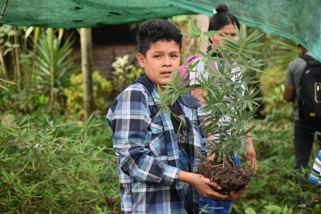 www.forestbambu.com81DSC1384-1024x683